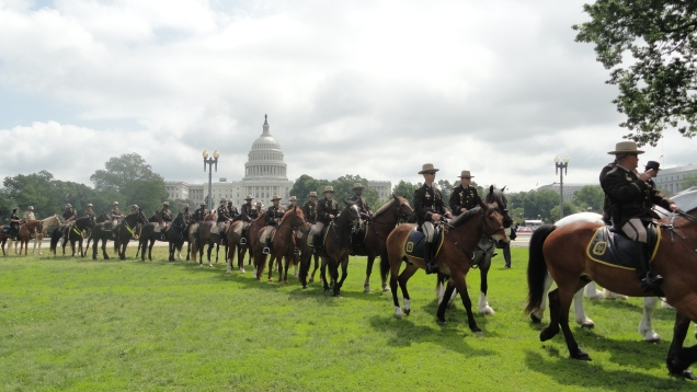 Parade of mounted police officers