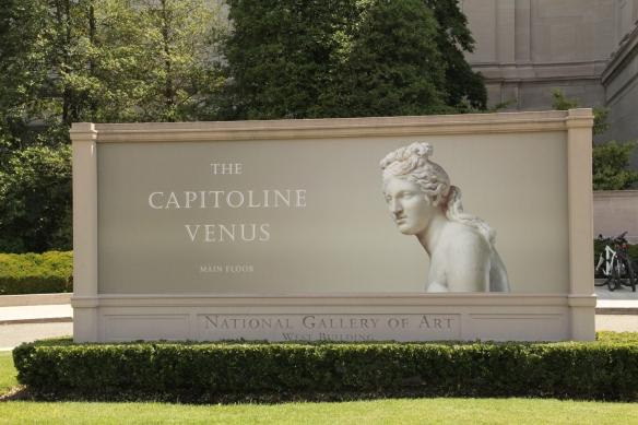 Capitoline Venus - NGA
